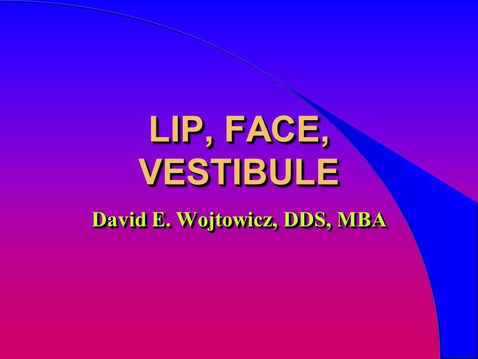 LIP, FACE, VESTIBULE David E. Wojtowicz, DDS, MBA
