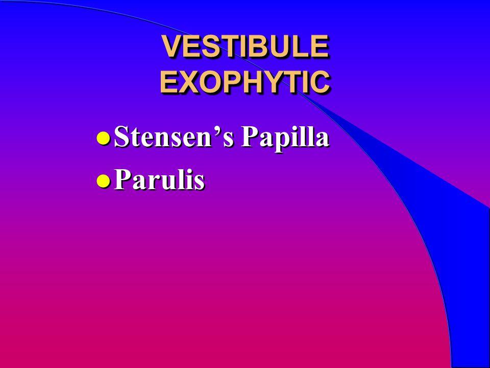 VESTIBULE EXOPHYTIC l Stensen's Papilla l Parulis l Stensen's Papilla l Parulis