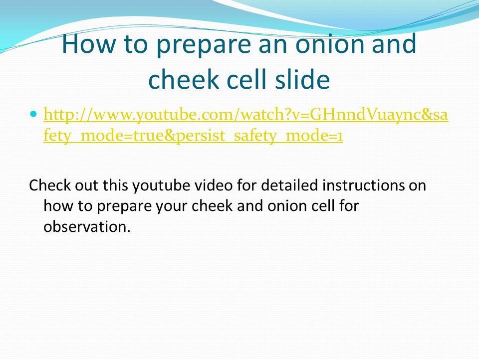 How to prepare an onion and cheek cell slide http://www.youtube.com/watch?v=GHnndVuaync&sa fety_mode=true&persist_safety_mode=1 http://www.youtube.com