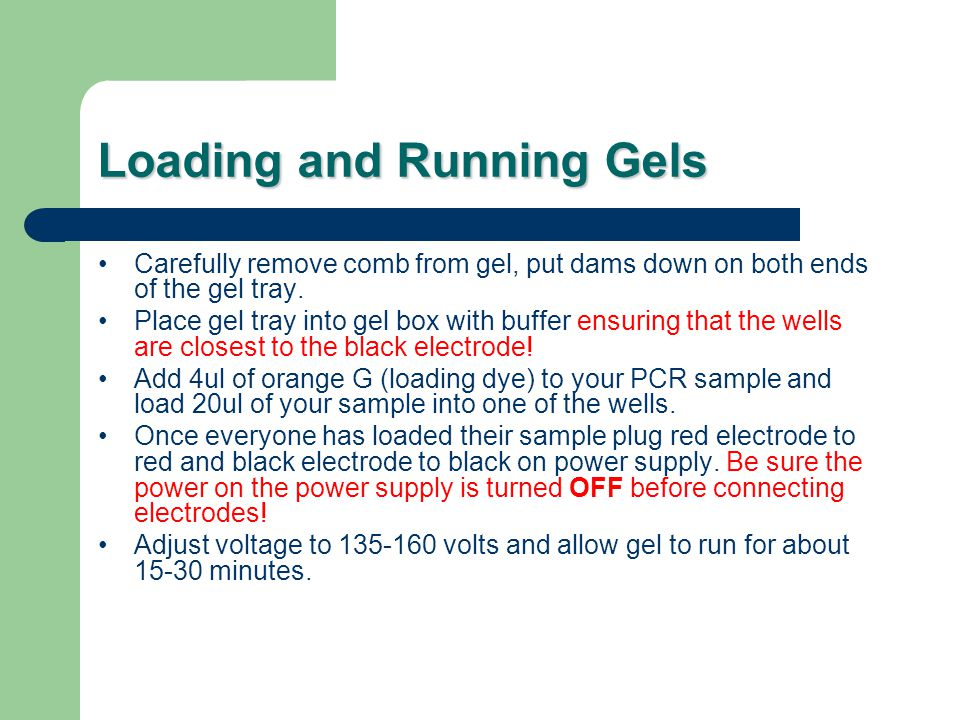 Loading and Running Gels Carefully remove comb from gel, put dams down on both ends of the gel tray.