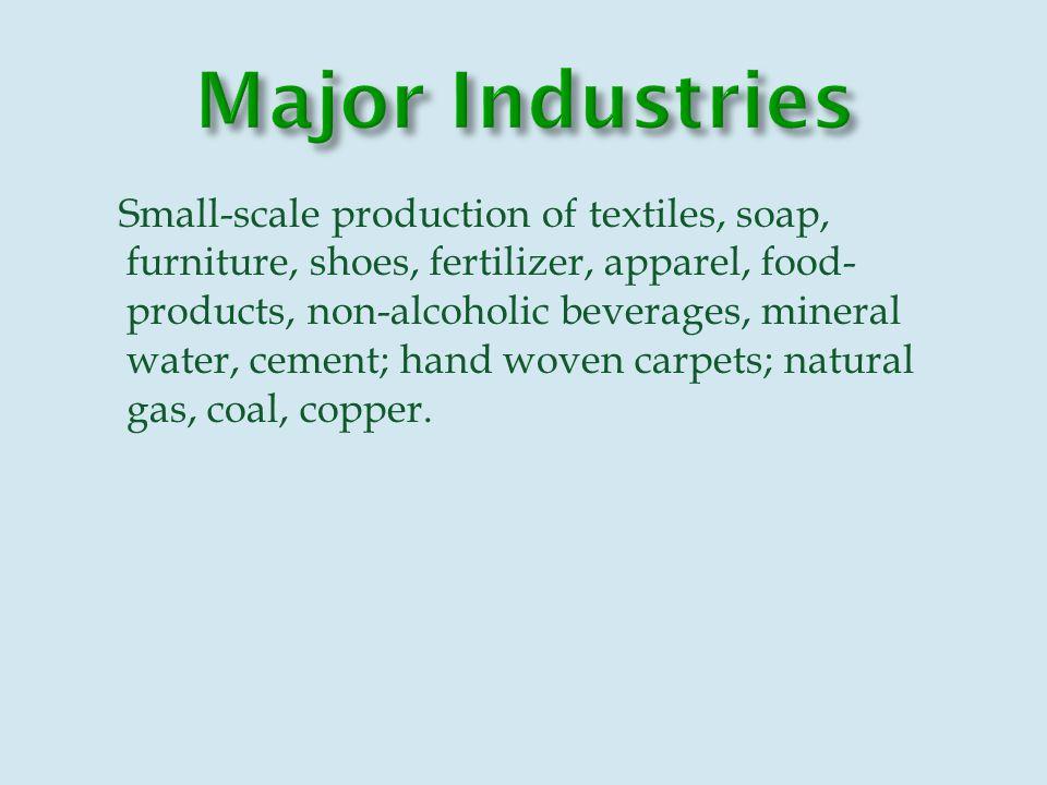 Natural gas, Petroleum, Coal, Copper, Chromite, Talc, Barites, Sulfur, Lead, Zinc, Iron ore, Salt, Precious and Semi-precious stones.