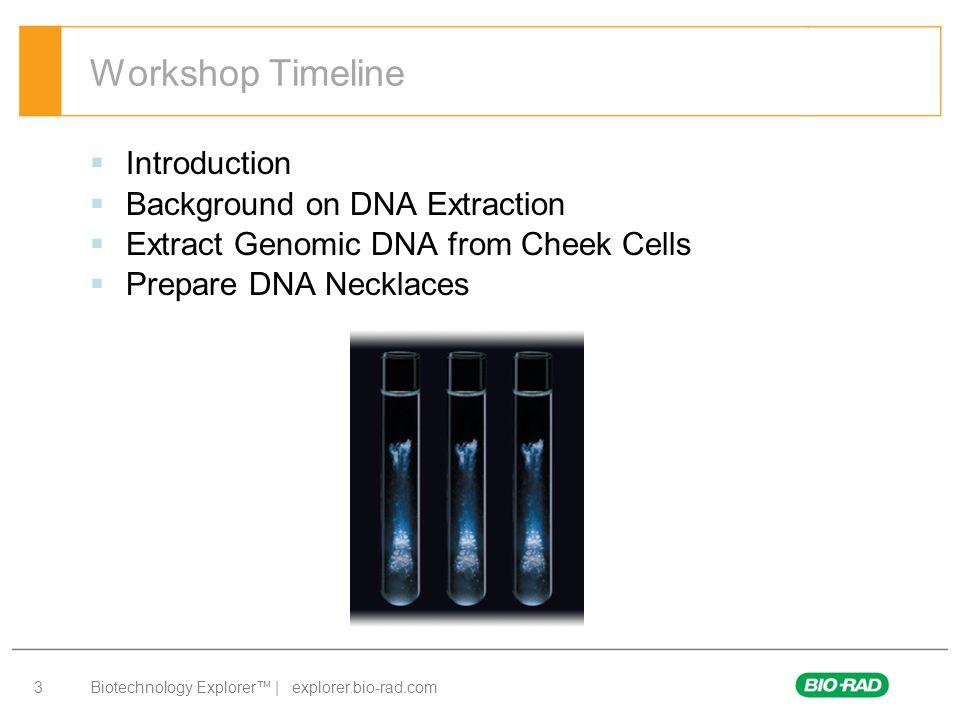 Biotechnology Explorer™ | explorer.bio-rad.com 34 166-2300EDU Kit provides enough materials for 36 Students Above kit contains: DNA Extraction Module (166-2000EDU) DNA Helix Necklace Module (166-2250EDU), 36 per box Genes in a Bottle Kit Components