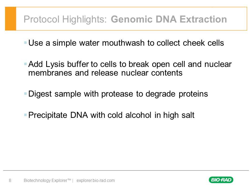Biotechnology Explorer™ | explorer.bio-rad.com 9 Genes in a Bottle: Procedure Overview