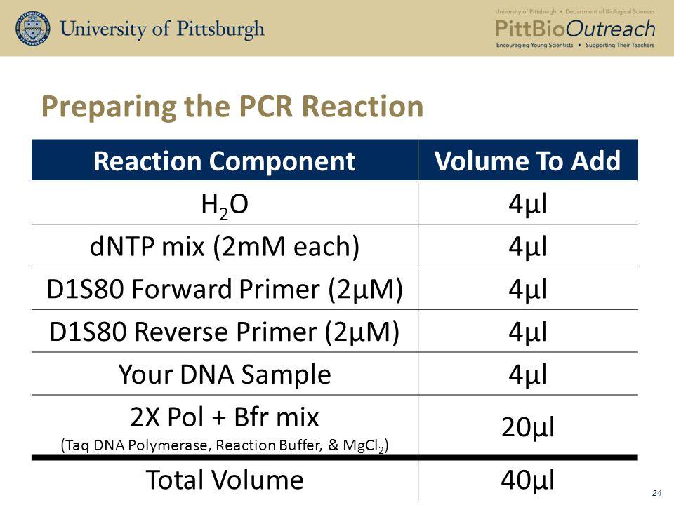 Preparing the PCR Reaction Reaction ComponentVolume To Add H2OH2O4µl dNTP mix (2mM each)4µl D1S80 Forward Primer (2µM)4µl D1S80 Reverse Primer (2µM)4µl Your DNA Sample4µl 2X Pol + Bfr mix (Taq DNA Polymerase, Reaction Buffer, & MgCl 2 ) 20µl Total Volume40µl 24
