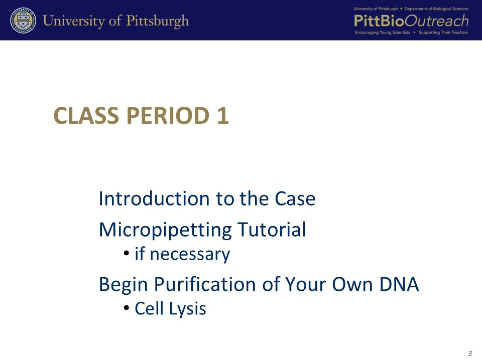 CLASS PERIOD 1 Introduction to the Case Micropipetting Tutorial if necessary Begin Purification of Your Own DNA Cell Lysis 3