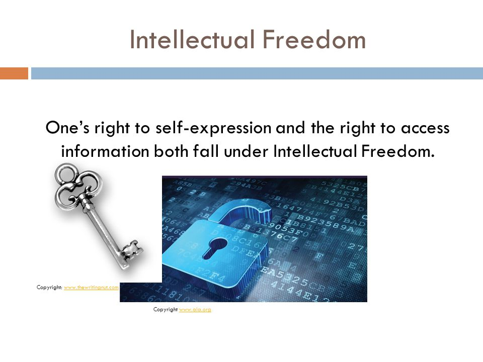 Intellectual Freedom One's right to self-expression and the right to access information both fall under Intellectual Freedom.