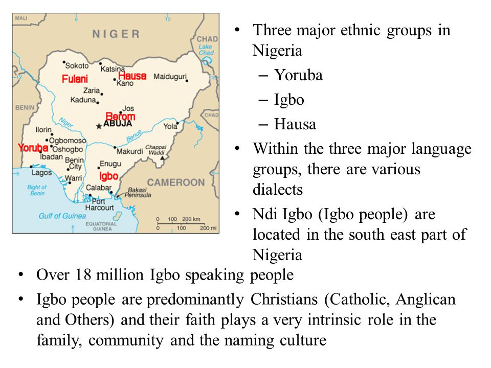 Three major ethnic groups in Nigeria – Yoruba – Igbo – Hausa Within the three major language groups, there are various dialects Ndi Igbo (Igbo people)
