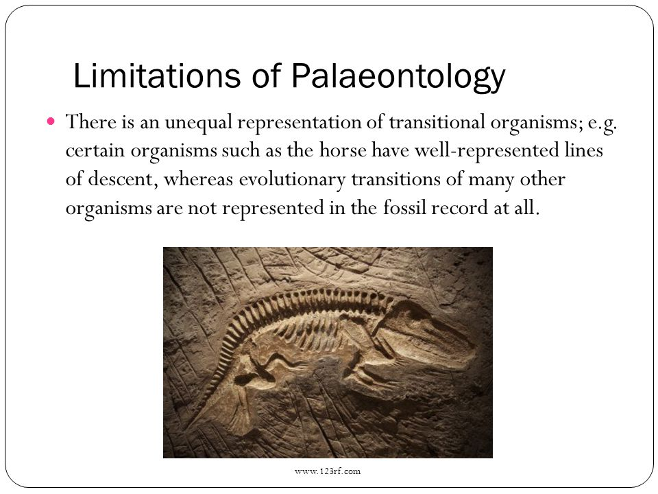 Limitations of Palaeontology There is an unequal representation of transitional organisms; e.g. certain organisms such as the horse have well-represen