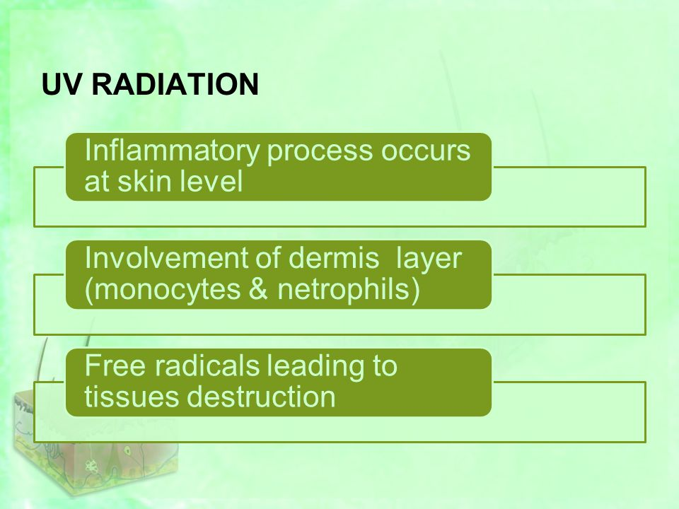 UV RADIATION Inflammatory process occurs at skin level Involvement of dermis layer (monocytes & netrophils) Free radicals leading to tissues destruction