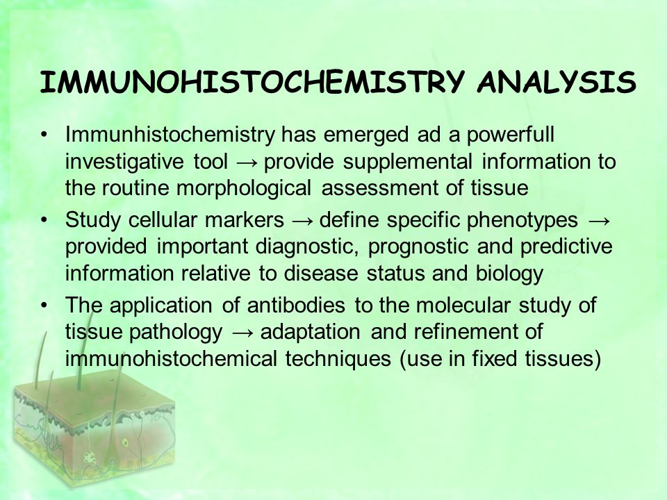 IMMUNOHISTOCHEMISTRY ANALYSIS Immunhistochemistry has emerged ad a powerfull investigative tool → provide supplemental information to the routine morphological assessment of tissue Study cellular markers → define specific phenotypes → provided important diagnostic, prognostic and predictive information relative to disease status and biology The application of antibodies to the molecular study of tissue pathology → adaptation and refinement of immunohistochemical techniques (use in fixed tissues)