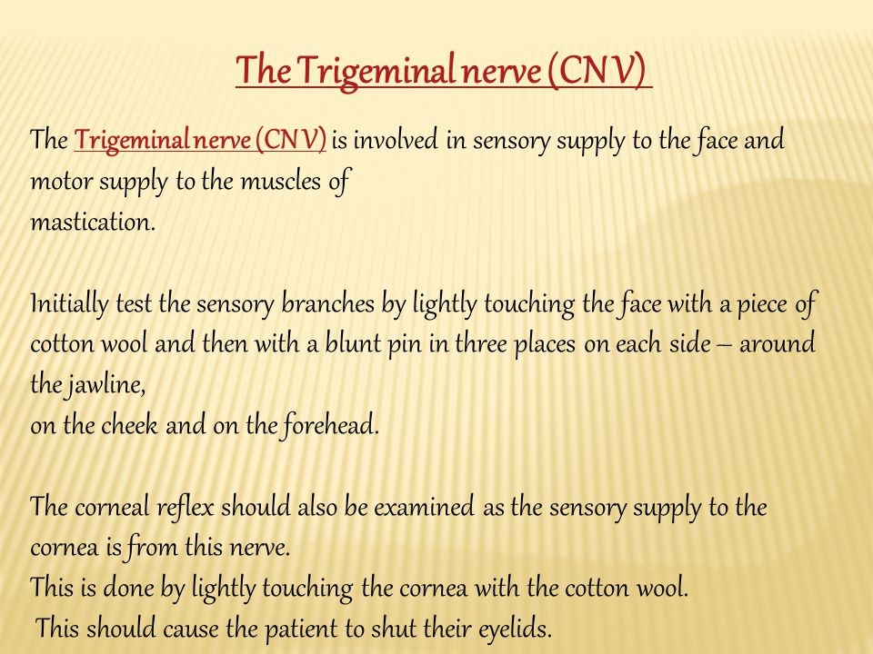 The Trigeminal nerve (CN V) is involved in sensory supply to the face and motor supply to the muscles ofTrigeminal nerve (CN V) mastication.