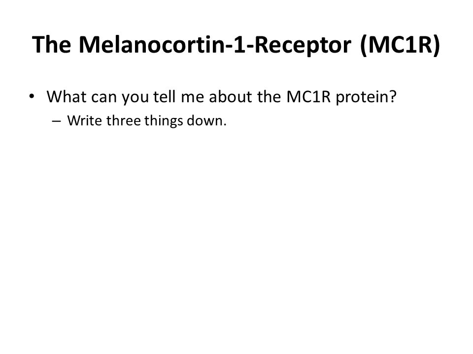 The Melanocortin-1-Receptor (MC1R) What can you tell me about the MC1R protein? – Write three things down.