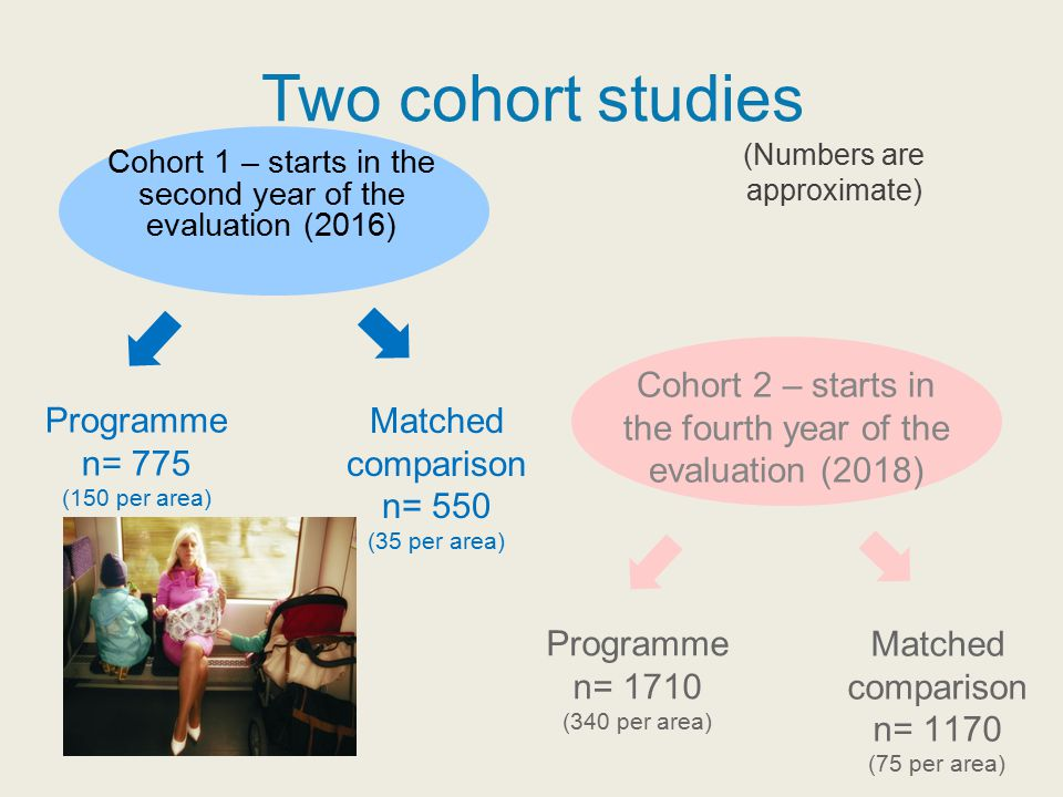 Two cohort studies Cohort 1 – starts in the second year of the evaluation (2016) Cohort 2 – starts in the fourth year of the evaluation (2018) Program