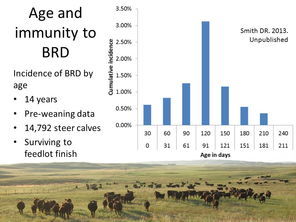 Age and immunity to BRD Incidence of BRD by age 14 years Pre-weaning data 14,792 steer calves Surviving to feedlot finish Smith DR.