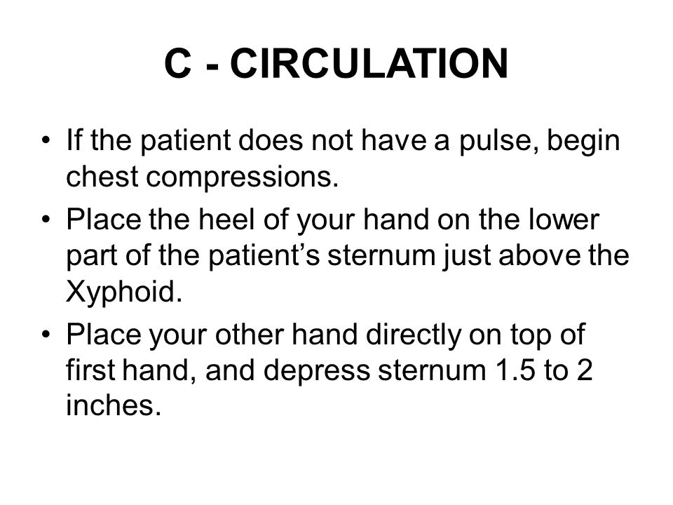 C - CIRCULATION If the patient does not have a pulse, begin chest compressions.
