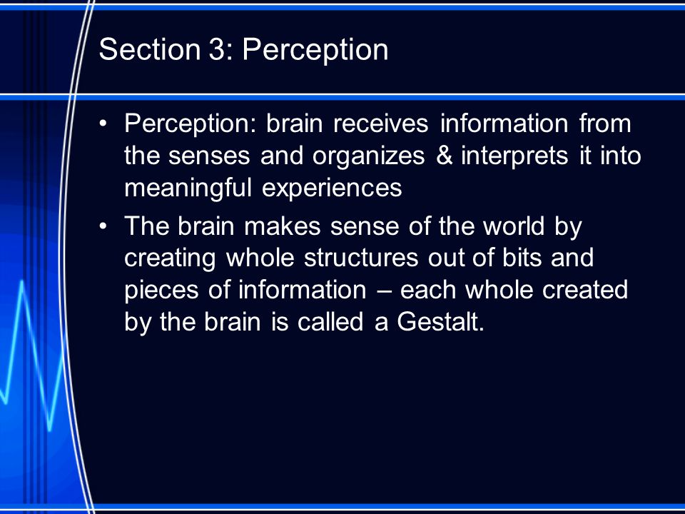 Section 3: Perception Perception: brain receives information from the senses and organizes & interprets it into meaningful experiences The brain makes sense of the world by creating whole structures out of bits and pieces of information – each whole created by the brain is called a Gestalt.