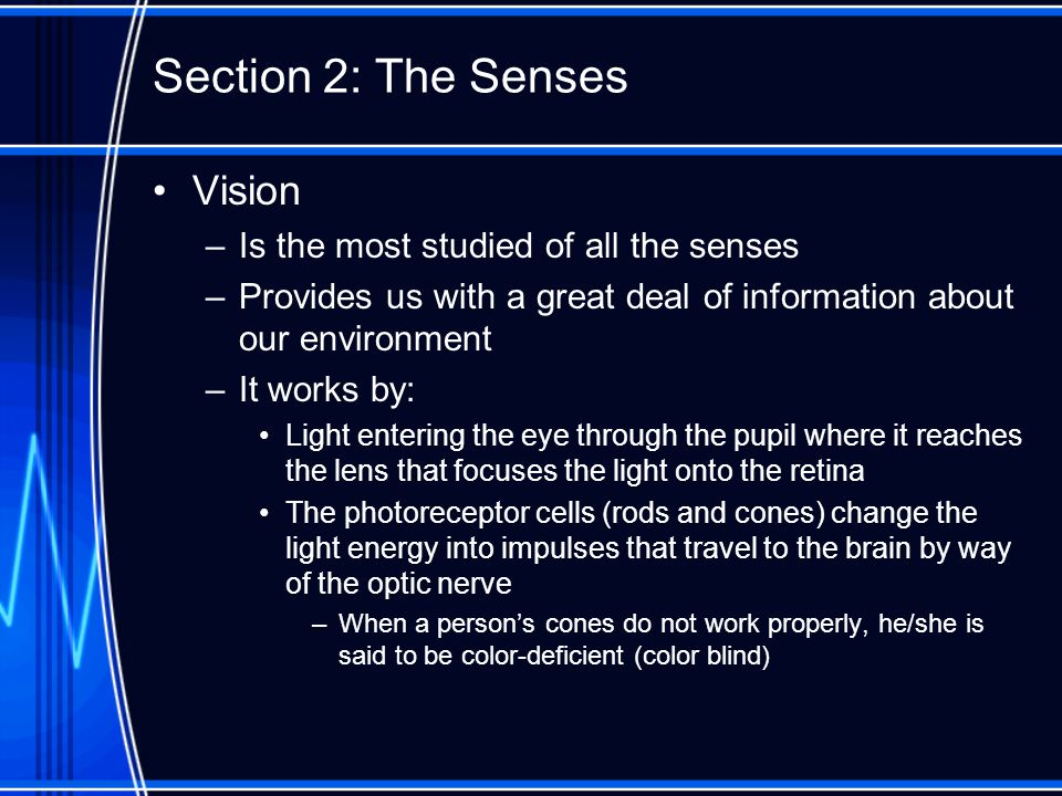 Section 2: The Senses Vision –Is the most studied of all the senses –Provides us with a great deal of information about our environment –It works by: Light entering the eye through the pupil where it reaches the lens that focuses the light onto the retina The photoreceptor cells (rods and cones) change the light energy into impulses that travel to the brain by way of the optic nerve –When a person's cones do not work properly, he/she is said to be color-deficient (color blind)