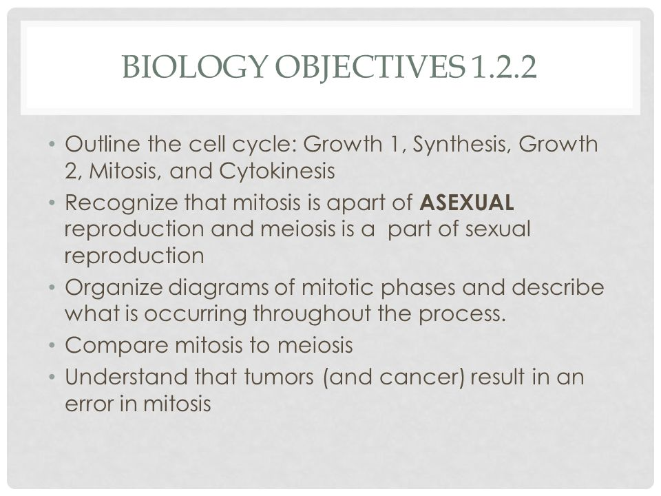 BIOLOGY OBJECTIVES 1.2.2 Outline the cell cycle: Growth 1, Synthesis, Growth 2, Mitosis, and Cytokinesis Recognize that mitosis is apart of ASEXUAL reproduction and meiosis is a part of sexual reproduction Organize diagrams of mitotic phases and describe what is occurring throughout the process.