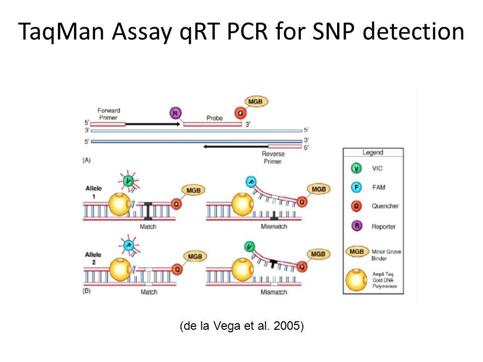 TaqMan Assay qRT PCR for SNP detection (de la Vega et al. 2005)