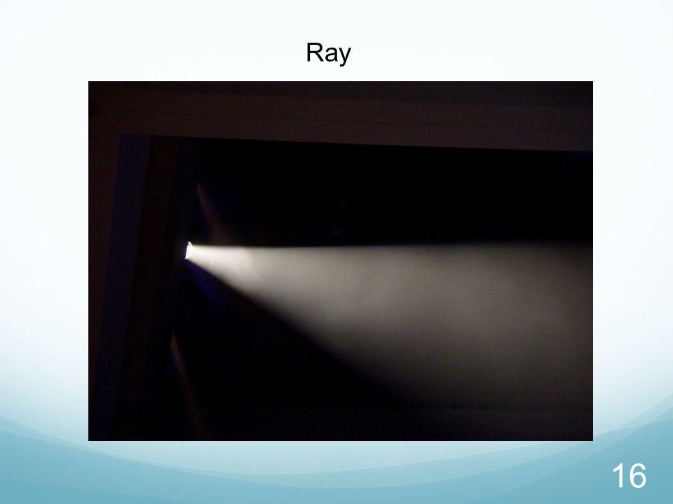 Ray 16