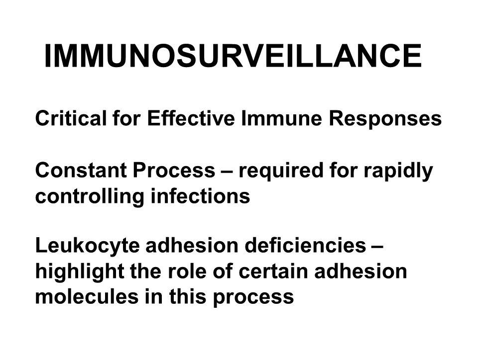 Infection Inflammatory Mediators
