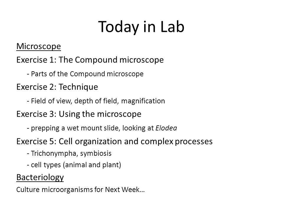 Today in Lab Microscope Exercise 1: The Compound microscope - Parts of the Compound microscope Exercise 2: Technique - Field of view, depth of field, magnification Exercise 3: Using the microscope - prepping a wet mount slide, looking at Elodea Exercise 5: Cell organization and complex processes - Trichonympha, symbiosis - cell types (animal and plant) Bacteriology Culture microorganisms for Next Week…