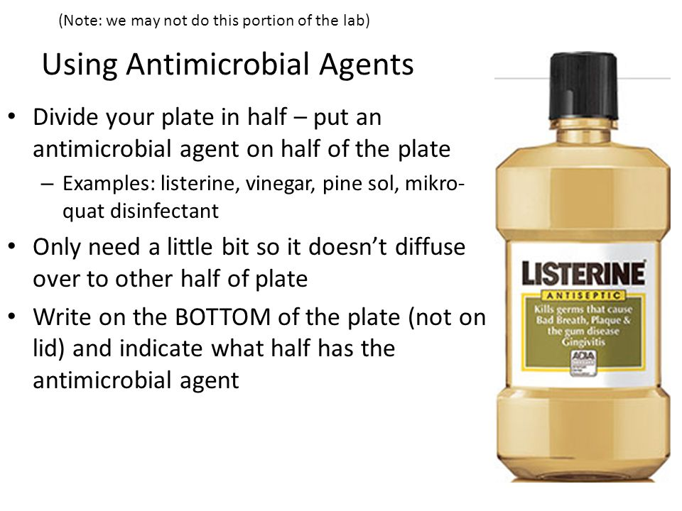 Using Antimicrobial Agents Divide your plate in half – put an antimicrobial agent on half of the plate – Examples: listerine, vinegar, pine sol, mikro- quat disinfectant Only need a little bit so it doesn't diffuse over to other half of plate Write on the BOTTOM of the plate (not on lid) and indicate what half has the antimicrobial agent (Note: we may not do this portion of the lab)
