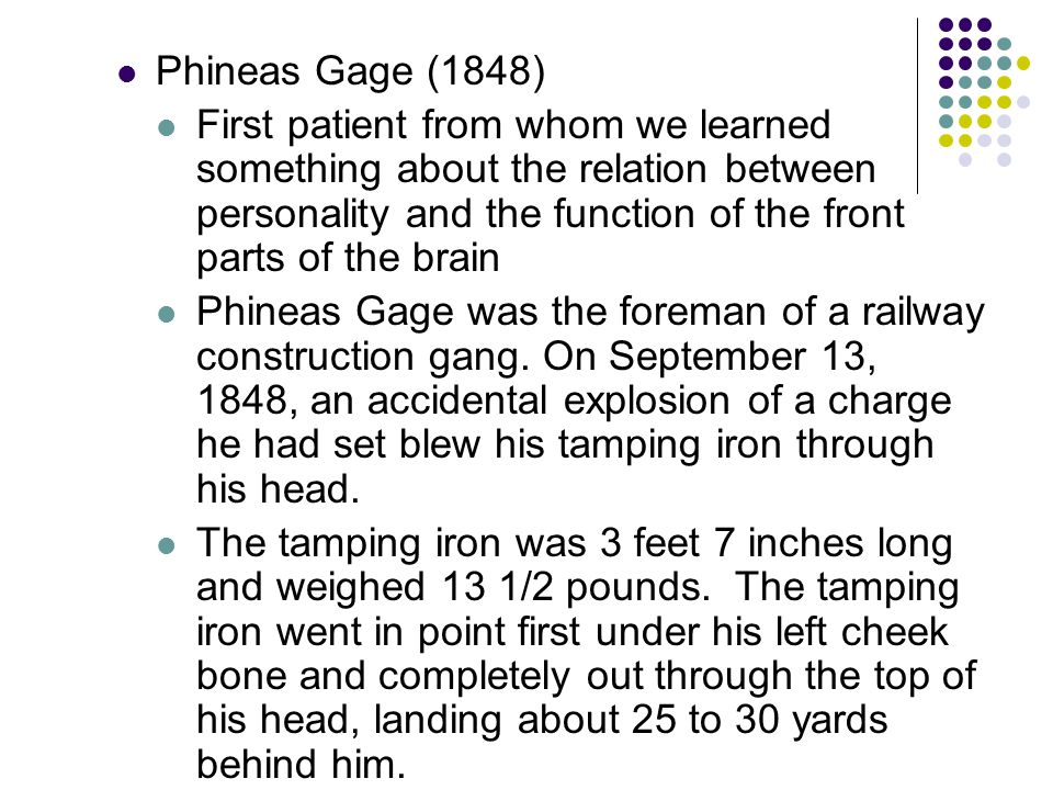Phineas Gage (1848) First patient from whom we learned something about the relation between personality and the function of the front parts of the brain Phineas Gage was the foreman of a railway construction gang.