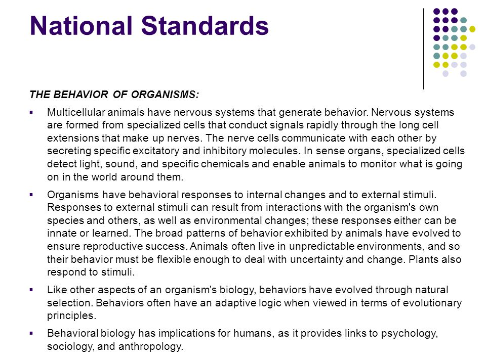 National Standards THE BEHAVIOR OF ORGANISMS:  Multicellular animals have nervous systems that generate behavior. Nervous systems are formed from spe