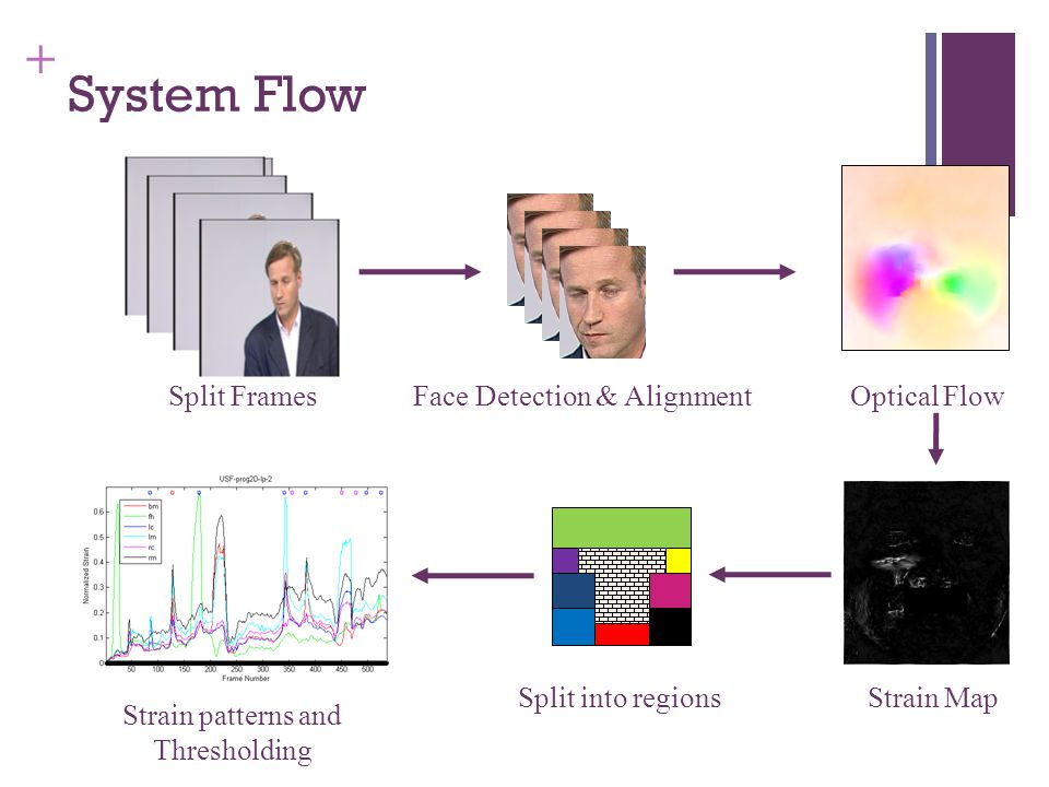 + System Flow Split Frames Face Detection & Alignment Optical Flow Strain MapSplit into regions Strain patterns and Thresholding