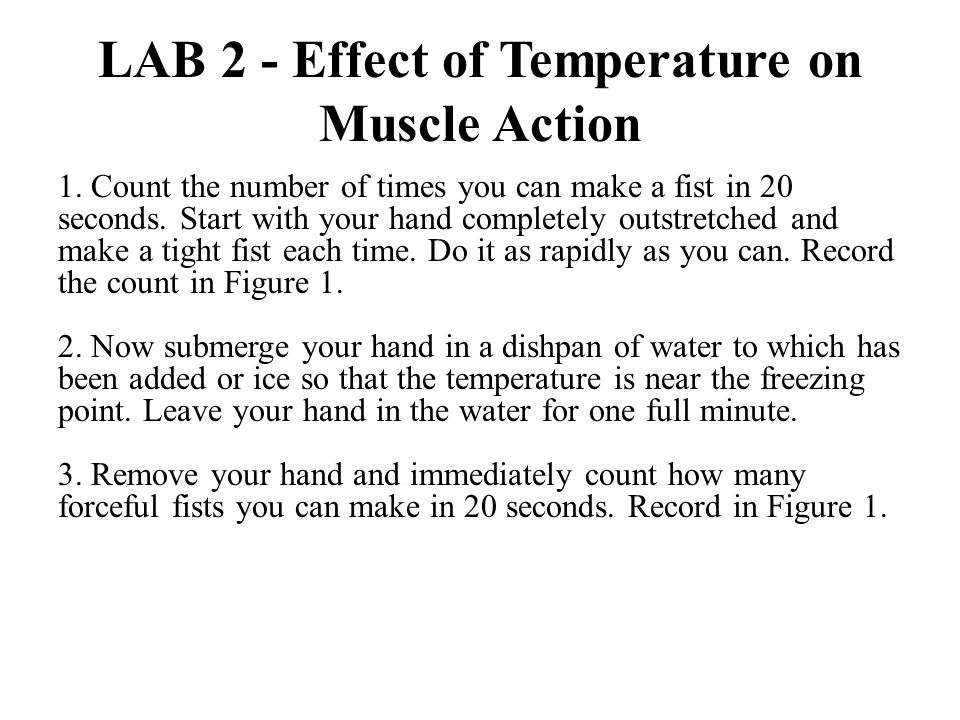LAB 3 - Effect of Fatigue on Muscle Action 1.