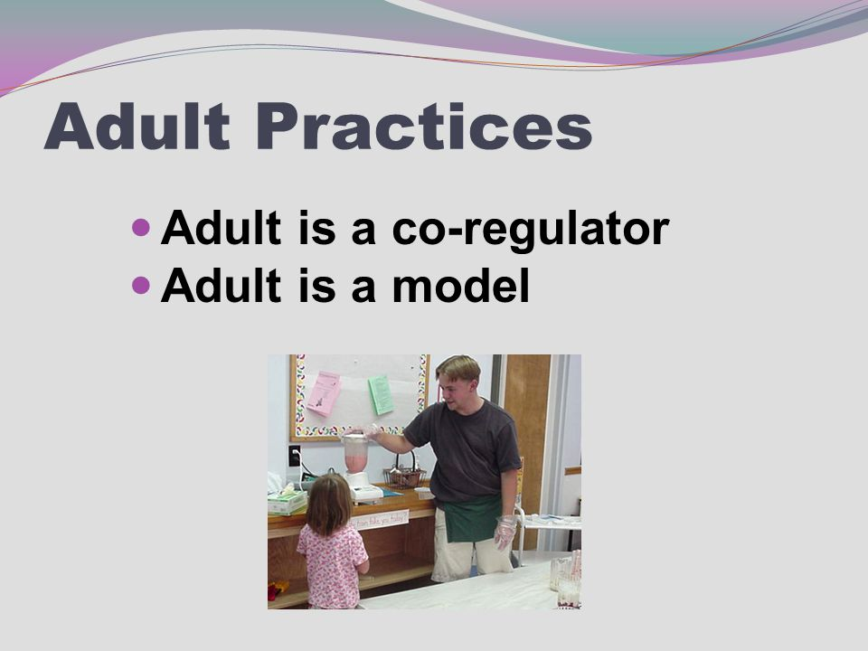 Adult Practices Adult is a co-regulator Adult is a model