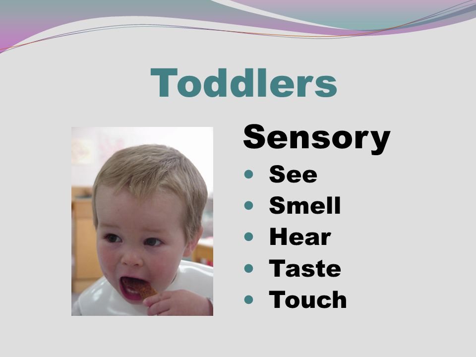 Toddlers Sensory See Smell Hear Taste Touch