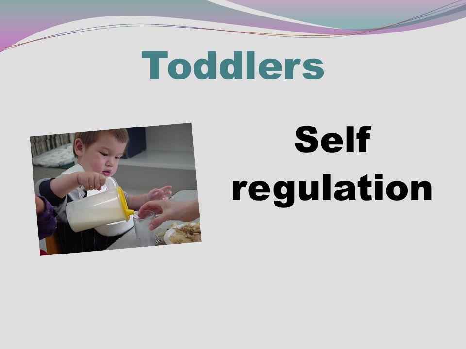 Toddlers Self regulation
