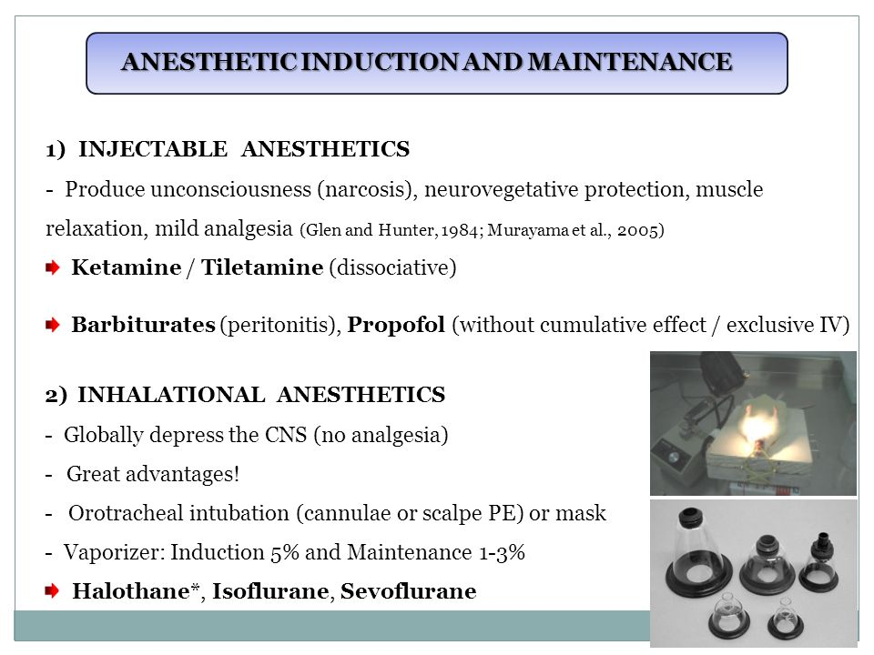 ANESTHETIC INDUCTION AND MAINTENANCE 1)INJECTABLE ANESTHETICS - Produce unconsciousness (narcosis), neurovegetative protection, muscle relaxation, mild analgesia (Glen and Hunter, 1984; Murayama et al., 2005) Ketamine / Tiletamine (dissociative) Barbiturates (peritonitis), Propofol (without cumulative effect / exclusive IV) 2)INHALATIONAL ANESTHETICS - Globally depress the CNS (no analgesia) - Great advantages.