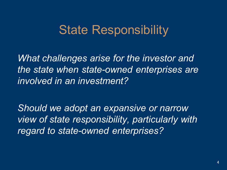 State Responsibility What challenges arise for the investor and the state when state-owned enterprises are involved in an investment.