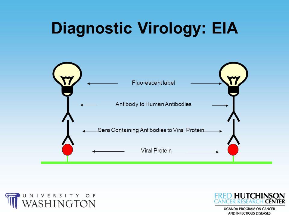 Diagnostic Virology: EIA Viral Protein Sera Containing Antibodies to Viral Protein Antibody to Human Antibodies Fluorescent label