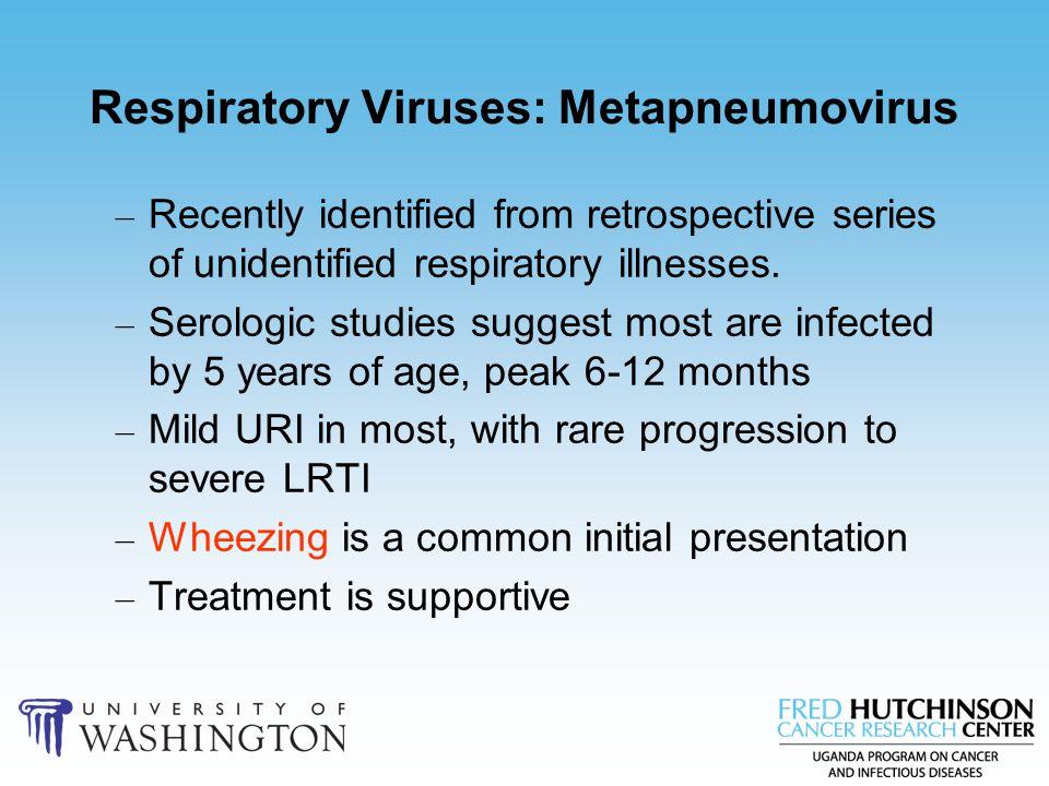 Respiratory Viruses: Metapneumovirus – Recently identified from retrospective series of unidentified respiratory illnesses. – Serologic studies sugges