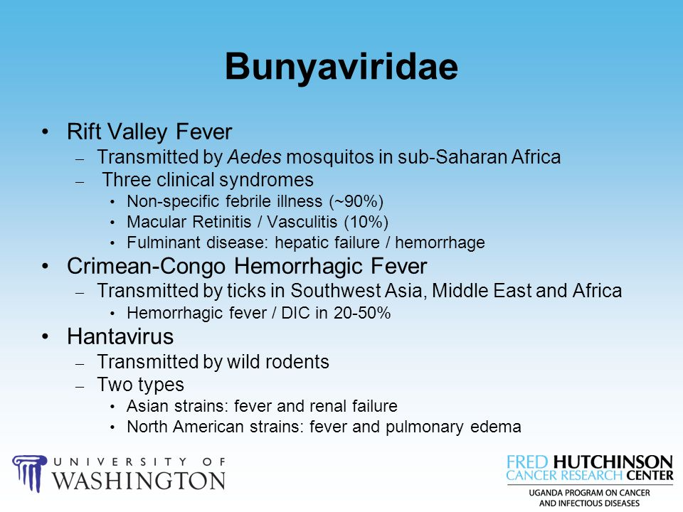 Bunyaviridae Rift Valley Fever – Transmitted by Aedes mosquitos in sub-Saharan Africa – Three clinical syndromes Non-specific febrile illness (~90%) M