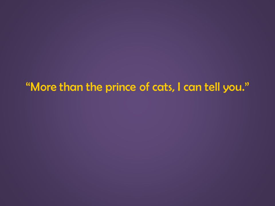 More than the prince of cats, I can tell you.