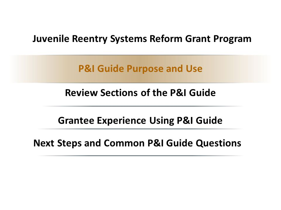 Grantee Experience Using P&I Guide Review Sections of the P&I Guide Next Steps and Common P&I Guide Questions P&I Guide Purpose and Use Juvenile Reentry Systems Reform Grant Program