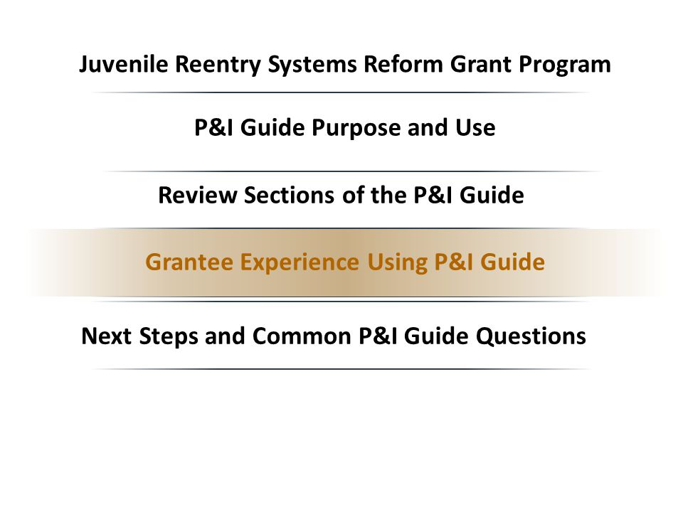 Next Steps and Common P&I Guide Questions P&I Guide Purpose and Use Grantee Experience Using P&I Guide Review Sections of the P&I Guide Juvenile Reentry Systems Reform Grant Program