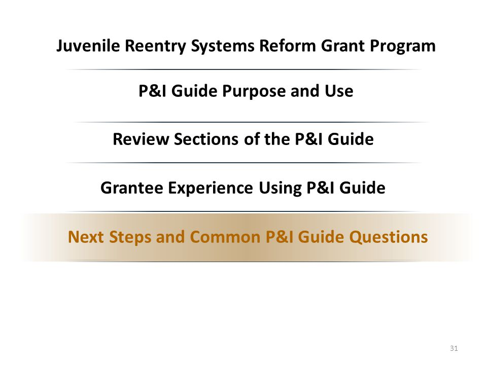 P&I Guide Purpose and Use Review Sections of the P&I Guide Grantee Experience Using P&I Guide Next Steps and Common P&I Guide Questions 31 Juvenile Reentry Systems Reform Grant Program