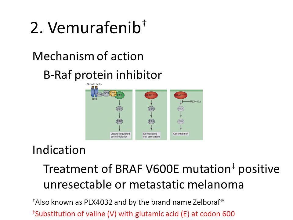 2. Vemurafenib † Mechanism of action B-Raf protein inhibitor Indication Treatment of BRAF V600E mutation ‡ positive unresectable or metastatic melanom