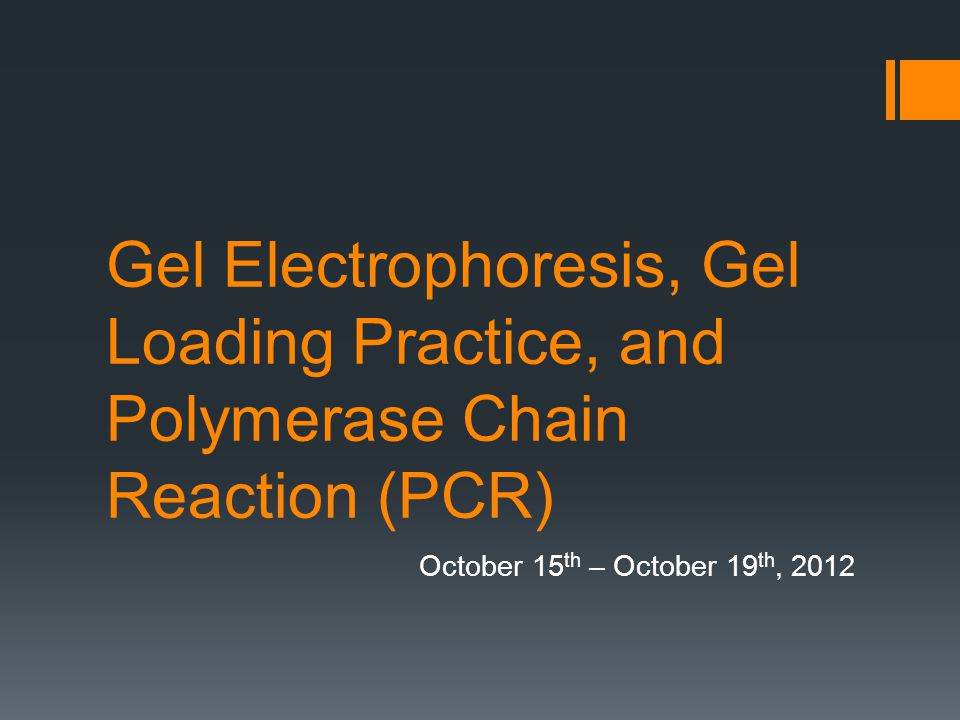 Gel Electrophoresis, Gel Loading Practice, and Polymerase Chain Reaction (PCR) October 15 th – October 19 th, 2012