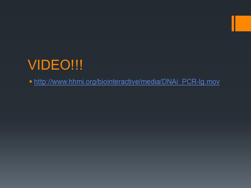 VIDEO!!.