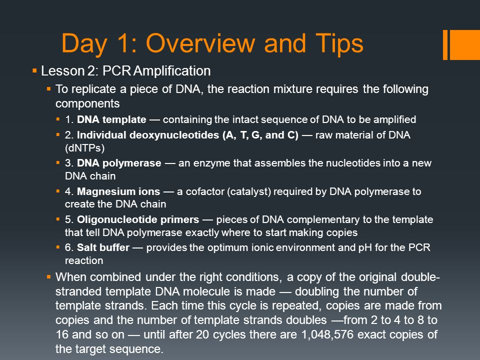  Lesson 2: PCR Amplification  To replicate a piece of DNA, the reaction mixture requires the following components  1.