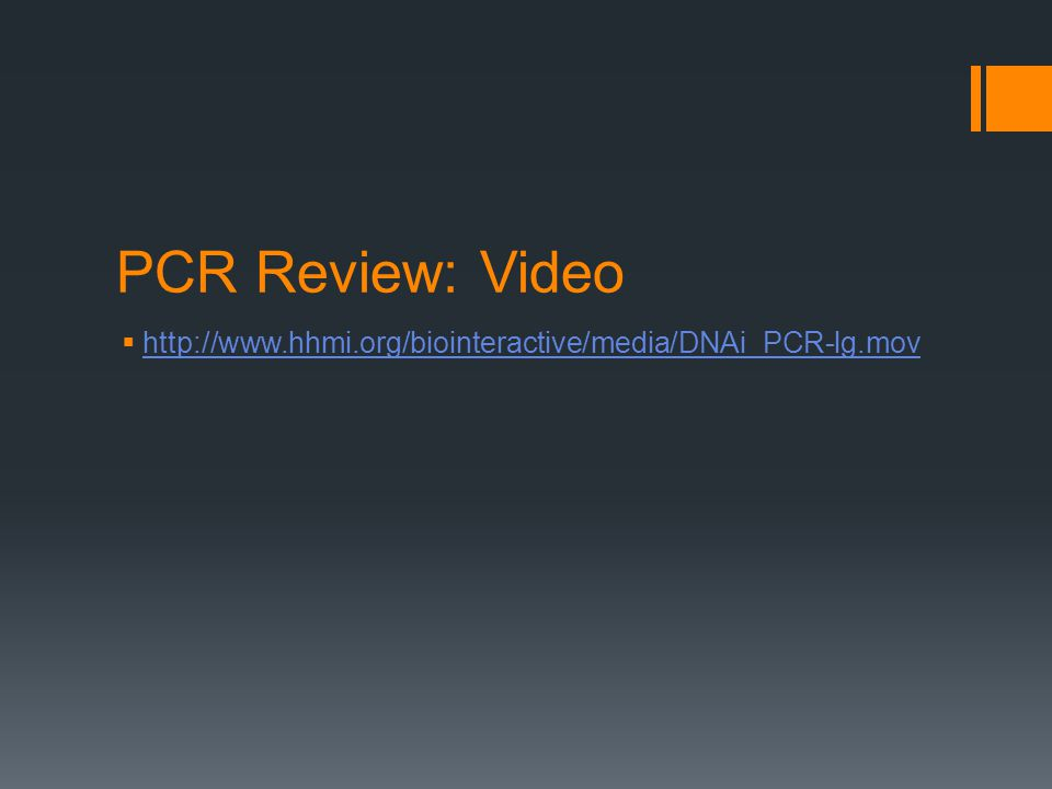 PCR Review: Video  http://www.hhmi.org/biointeractive/media/DNAi_PCR-lg.mov http://www.hhmi.org/biointeractive/media/DNAi_PCR-lg.mov