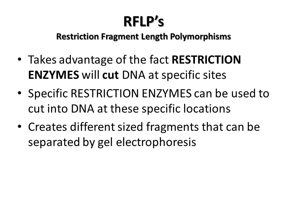 RFLP's Restriction Fragment Length Polymorphisms Takes advantage of the fact RESTRICTION ENZYMES will cut DNA at specific sites Specific RESTRICTION ENZYMES can be used to cut into DNA at these specific locations Creates different sized fragments that can be separated by gel electrophoresis