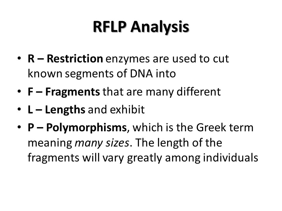 RFLP Analysis R – Restriction enzymes are used to cut known segments of DNA into F – Fragments that are many different L – Lengths and exhibit P – Polymorphisms, which is the Greek term meaning many sizes.
